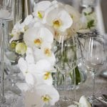 Wedding reception with floral arrangement of white orchids